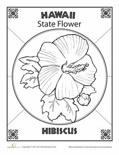 Worksheets: Hawaii State Flower