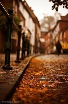 Fall Witch Wallpaper 1000 Images About Autumn In The City On Pinterest