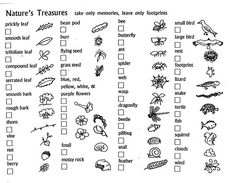 1000+ ideas about Nature Scavenger Hunts on Pinterest