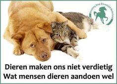 Afbeeldingsresultaat voor stop dierenmishandeling