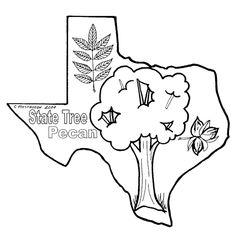 1000+ images about Texas Coloring Book on Pinterest
