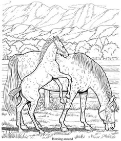 Welcome to Dover Publications / Creative Haven Horses Draw