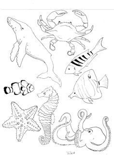 Ocean Commotion Vbs Coloring Pages Coloring Pages