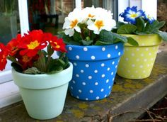 Colorful Backyard Makeover Planters Stencils And Solutions