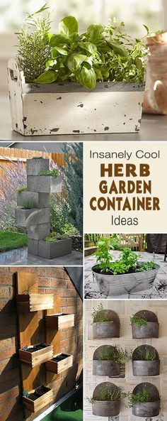 Insanely Cool Herb Garden Container Ideas Gardens Planters And
