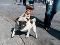 1000+ images about awe... on Pinterest   Toy story, Woody ...