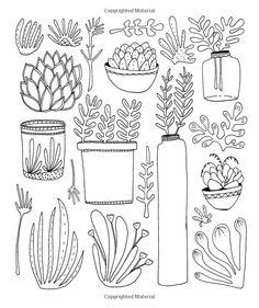 Succulent Line Art, Printable ClipArt Outline, Succulent