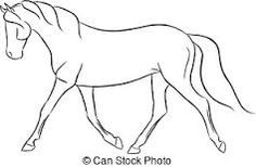 Trotting horse superficial muscle anatomy diagram