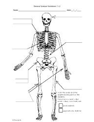 Science worksheets, Life science and Worksheets on Pinterest