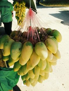 1000 Images About Fruits In The World On Pinterest Philippines Fruit And Mango
