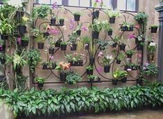 Building A Vertical Orchid Garden Wall Container Gardening