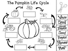 Pumpkin Shape Trace, Count, and Graph FREEBIE