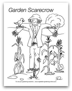 1000+ images about Kids' Printable Garden Worksheets