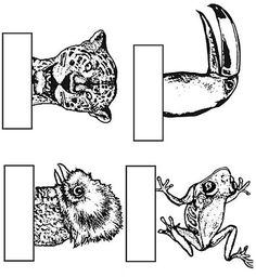 Sloth pattern. Use the printable outline for crafts