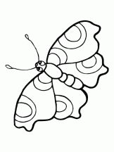 1000+ images about PROYECTO LAS MARIPOSAS on Pinterest
