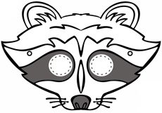 Raccoons, Circles and Team building on Pinterest