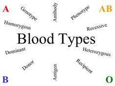1000+ images about Blood Types, Blood related disorders