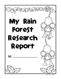 1000+ images about Rainforest Lesson Plans on Pinterest