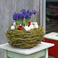 Osterdeko Osternest Mit Bunten Frühlingsblumen Tolle Feste Und