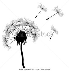 Business Photography Logo and Watermark- Dandelion Design