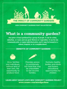 Basic Infrastructure For Successful Community Gardening Garden