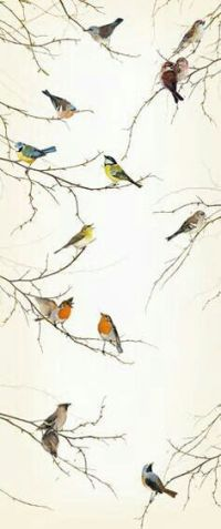 1000+ ideas about Bird Wallpaper on Pinterest | Timorous ...