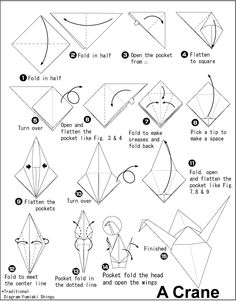 Origami, How to fold and Easy origami on Pinterest