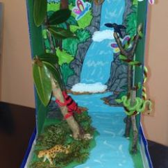 Deciduous Forest Layers Diagram 110 Quad Bike Wiring 1000+ Images About School Projects On Pinterest | Dioramas, Rainforests And Rainforest Habitat