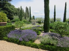 Les Confines The Private Provencal Garden Internationally