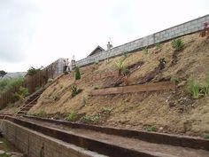 Steep Hillside Landscaping Ideas Steep Like Ours Landscape