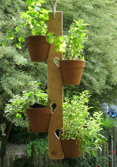 Wooden Fence or Wall Mount Clay PotPlant Hanger