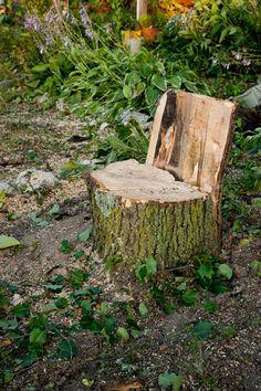 Outdoor Tree Stump Decorating Ideas Gardening Pinterest Tree