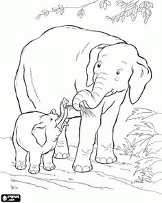 1000+ images about Coloring for eldery people and dementia