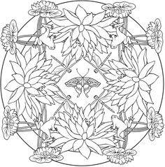 1000+ images about Creative Haven coloring pages By Dover