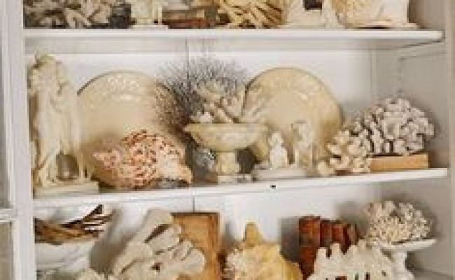 1000 Images About Seashell Art And Crafts On Pinterest