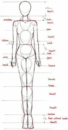 Cuerpo humano.