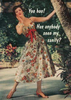 Laughter On Pinterest Anne Taintor Retro Humor And