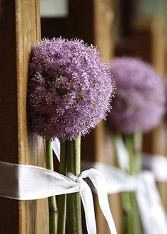Brautjunfer Blumenstrau lila Calla hochzeit 2013 wei Brautstrau  Blumen  Pinterest  CallaLilien Blume und Lilienbouquet