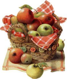 fruits laminas para
