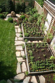 An Idea For My Vegetable Garden Puutarhaan Vihannekset