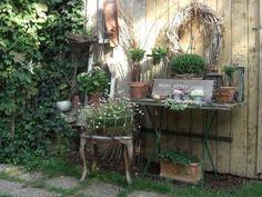 Dekoriertes Tischlein Wohnen Und Garten Foto