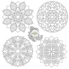1000+ images about Zentangle / Doodle on Pinterest