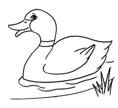 Mallard duck pattern. Use the printable outline for crafts