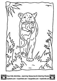 Free zoo animal worksheet for kindergarteners. This would