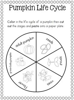 The o'jays, Worksheets and Life cycles on Pinterest