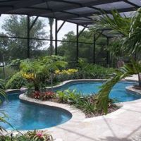 Pool - Pool Cage - Plants and Trees - Lanai Landscaping ...