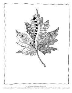 Coloring, Leaf template and Tes on Pinterest