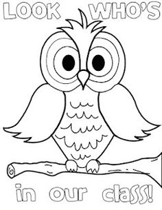 Color by numbers, Number worksheets and Owl on Pinterest