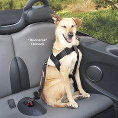 Special Dog harness for Wrangler JeepForumcom Trail