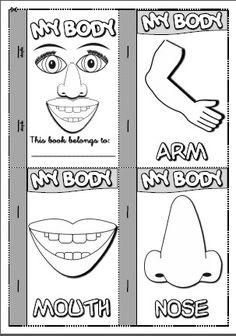 Easy to Color kindergarten body parts worksheet human body